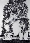 Sparklewaltz, 2008, 250 x 150 cm, graphite on paper
